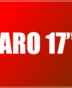 "Pneus Aro 17"""