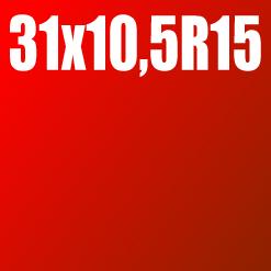 Pneu 31x10,5 R15