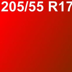 Pneu 205/55 R17